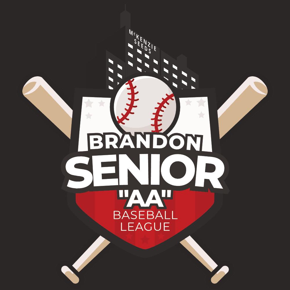 Andrew Agencies Senior AA Baseball web design Brandon MB by Prairie Mountain Media